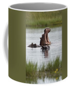 Hippo In Water Exhibits Aggresive Coffee Mug