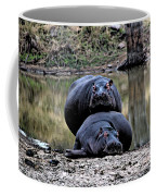 Hippos In Love Coffee Mug