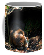 Hit The Otter Snooze Coffee Mug