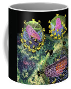 Hiv Three Sectioned Virions On Black Coffee Mug