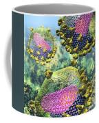 Hiv Three Sectioned Virions On Blue Coffee Mug