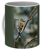 Ho Hum Bird In An Ice Storm Coffee Mug