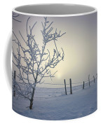 Hoar Frost Covering Trees And Barbed Coffee Mug