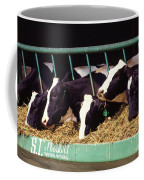 Holstein Dairy Cows Coffee Mug by Photo Researchers