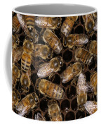 Honey Bees Coffee Mug