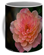 Honey Bunch Coffee Mug