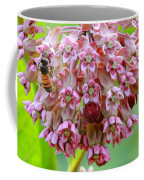 Honeybee On Milkweed Coffee Mug