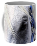 Horse At Mule Day Benson Coffee Mug