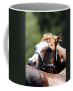 Horse At Mule Days 2012 - Benson Coffee Mug
