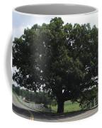 Horse Barn Hill Uconn  Coffee Mug