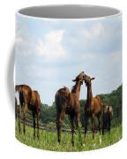 Horse Foul Play II Coffee Mug
