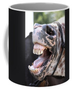 Horse Humor Coffee Mug