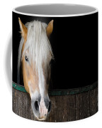 Horse In The Stable Coffee Mug