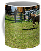 Horse Jump Coffee Mug