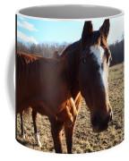 Horse Neck Coffee Mug by Robert Margetts