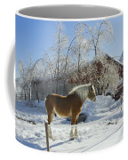 Horse On Maine Farm After Snow And Ice Storm Coffee Mug