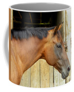 Horse Portrail Coffee Mug