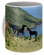 Horses By The Sea Coffee Mug