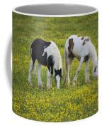 Horses Grazing, County Tyrone, Ireland Coffee Mug