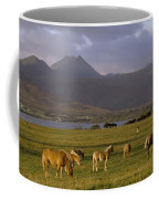 Horses Grazing, Macgillycuddys Reeks Coffee Mug