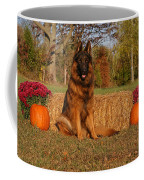 Hoss In Autumn II Coffee Mug