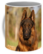 Hoss In Autumn Coffee Mug