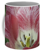 Hot Lips Coffee Mug