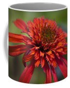 Hot Papaya Hybrid Coneflower Coffee Mug