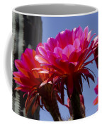 Hot Pink Cactus Flowers Coffee Mug