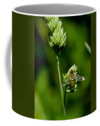 Hoverfly On Grass Coffee Mug