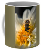 Hoverfly On White Flower Coffee Mug