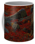 Huckleberry Bushes And Multi-hued Coffee Mug