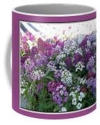 Hues Of Purple Phlox Coffee Mug