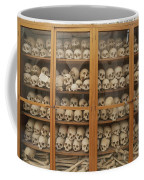 Human Skulls And Femurs Fill A Display Coffee Mug by Tino Soriano