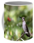 Hummingbird - Berries Coffee Mug