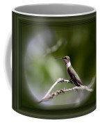 Hummingbird - Bird Coffee Mug
