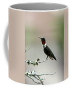 Hummingbird - Just The Tip Coffee Mug