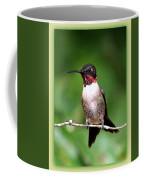 Hummingbird - Male - Will Soon Be Grown Coffee Mug
