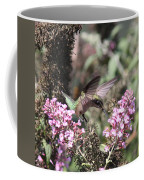 Hummingbird - Ruby-throated Hummingbird - Chopper Coffee Mug
