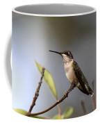Hummingbird - Ruby-throated Hummingbird - Near The End Coffee Mug
