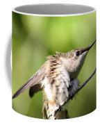 Hummingbird - Ruby-throated Hummingbird - Stretch Time Coffee Mug