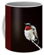 Hummingbird - Ruffled Feathers Coffee Mug