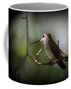 Hummingbird - Under The Canopy Coffee Mug