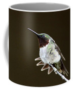 Hummingbird - Wide Tail Coffee Mug