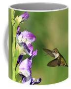 Hummingbird 2 Coffee Mug