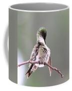 Hummingbird - Cleaning Up Coffee Mug