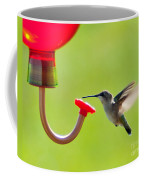 Hummingbird Drinking Coffee Mug