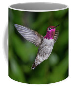 Hummingbird Glory Coffee Mug