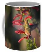 Hummingbird In Flight 1 Coffee Mug