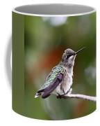 Hummingbird - Little Friend Coffee Mug